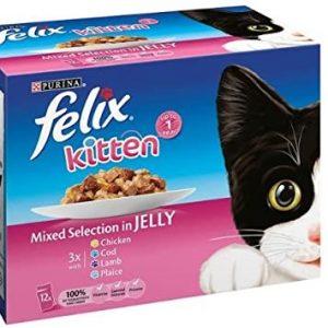 Kitten food (felix)
